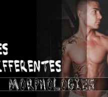Apprenez à vous connaître : les différentes morphologies