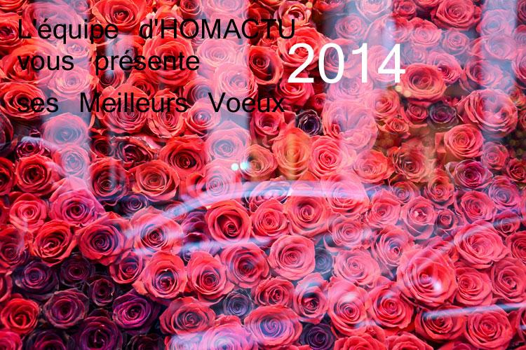 Vœux-2014