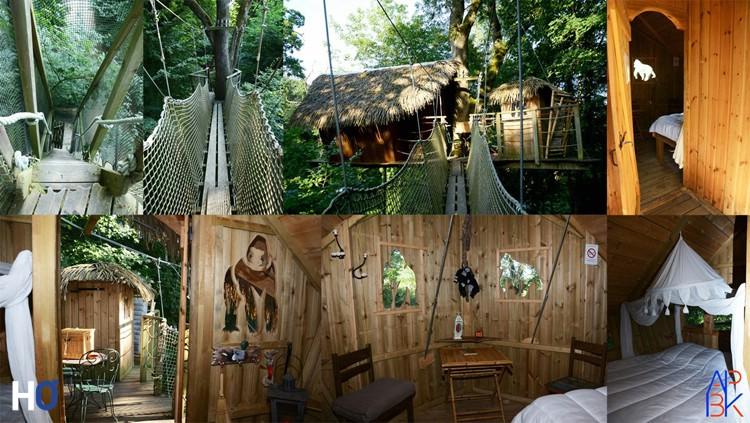 Ma cabane : Le Gorille
