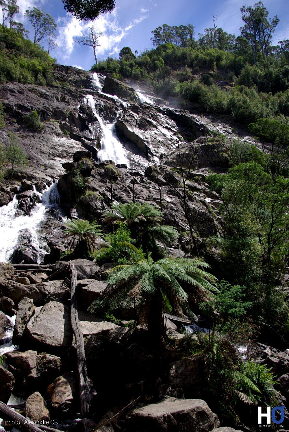 Tasmanie_fev_2016_0224