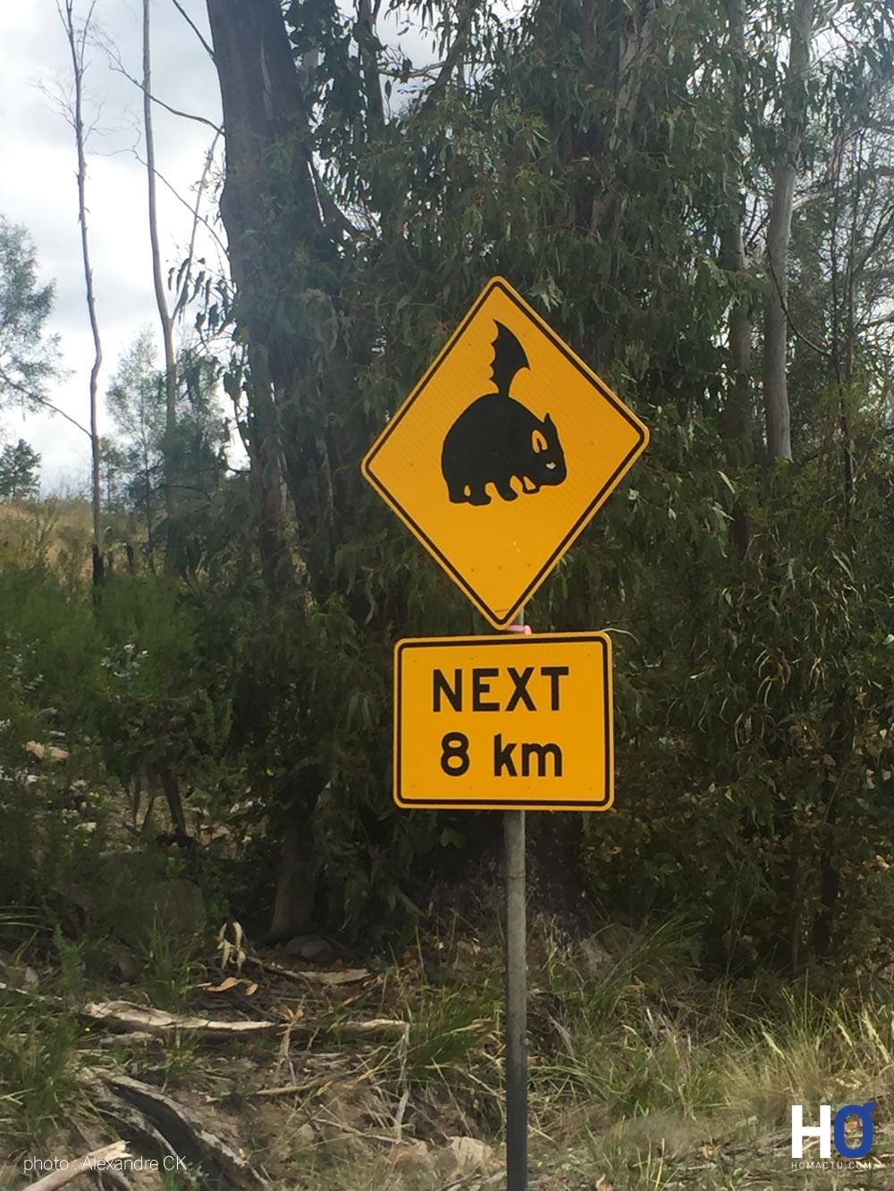 Tasmanie_fev_2016_1496