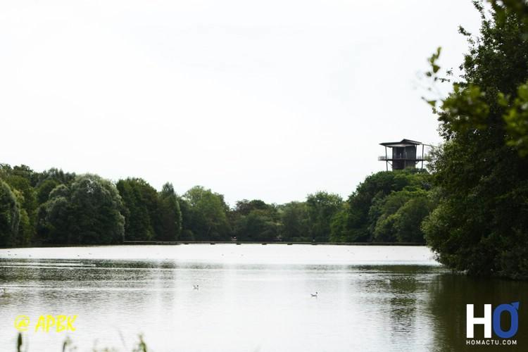 Au loin la tour panoramique