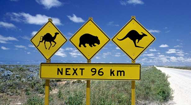 Australie ! L'aventure vous attend…