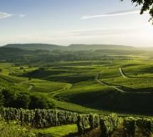 Jura : une région à découvrir