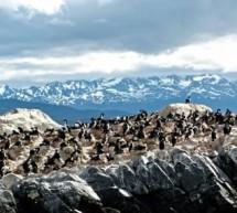 Ushuaïa, la ville du bout du monde