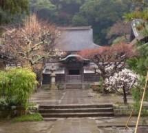 Kamakura, plongée spirituelle au coeur du Japon