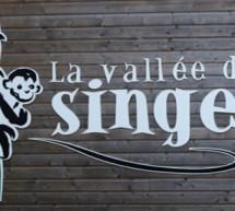 Voyage de presse : La Vienne – La Vallée des Singes .