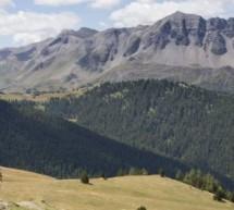VARS MOUNTAIN TRAIL (HAUTES-ALPES) :  2ème ÉDITION !