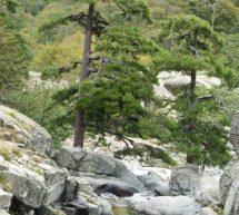 Les cascades de Corse…