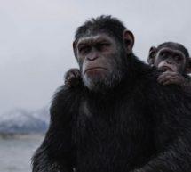 » La planète des singes – Suprématie » de Matt Reeves.