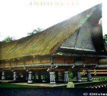 Indonésie : Sumatra à l'honneur.