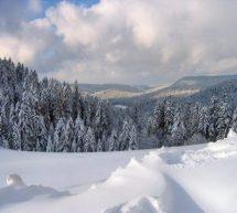 Les Vosges : l'autre massif montagneux