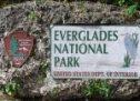 Les Everglades : patrimoine en péril