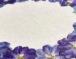 Herbarium, une invitation au voyage…