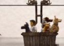 » L'île aux chiens » de Wes Anderson.