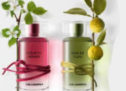 Karl Lagerfeld – Nouveaux parfums matière .