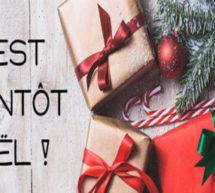 Noël arrive à grands pas, vous cherchez un cadeau à offrir à vos proches.