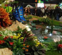 Les 12e Floralies internationales de Nantes : un show floral.
