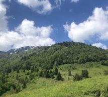 Alpes du Nord : 3 idées de balades thématiques