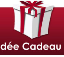Quels cadeaux allez-vous offrir pour les Fêtes de fin d'année? Suite…