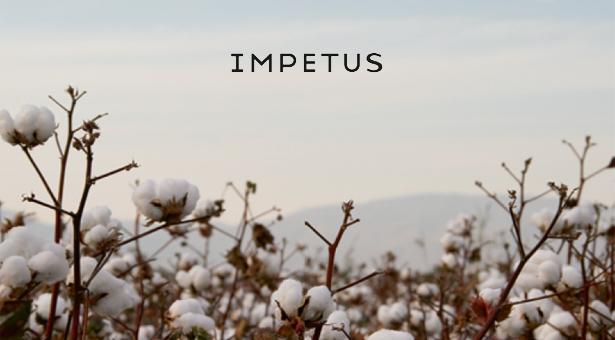 Impetus, automne/hiver 2021/22
